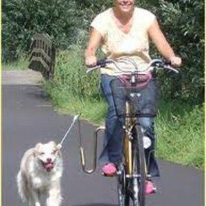 """Springer """"Origineel"""" fietsbeugel"""