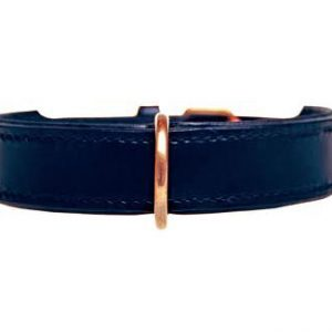 Halsband / lijn - black/gold