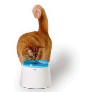 waterautomaat cat it 2liter
