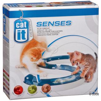 Cat-it senses
