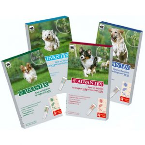 Advantix anti-parasiet hond