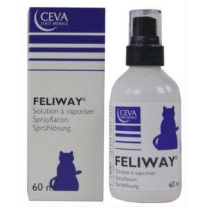feliway spray kat