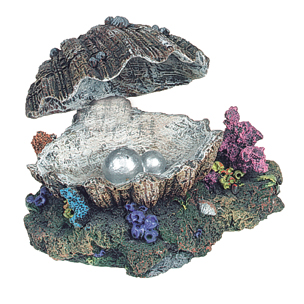 oester bewegend