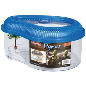 schildpadbak pyrus