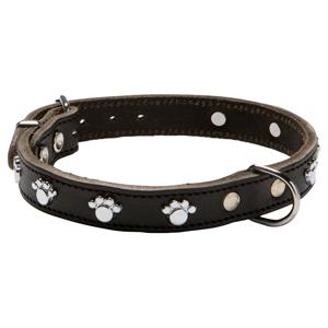 halsband met hondenpootjes