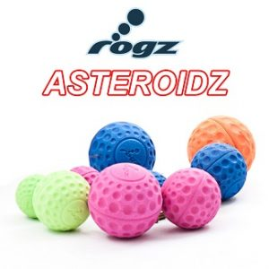 Rogs asteroids bal