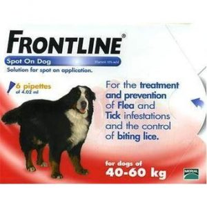 frontline XL +40kg  spot on en combo