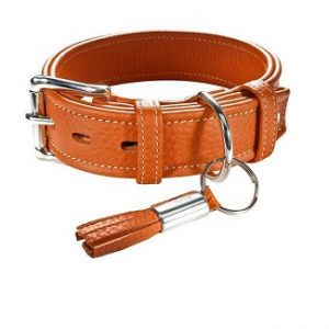hunter halsband cannes oranje