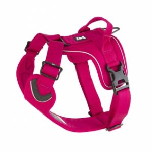 active harness rose