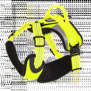 dazzle geel